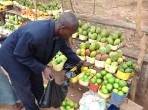 Fruit Seller on Tirinyi Rd. Eastern Uganda.