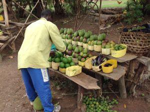 Roadside fruit vending entrepreneur, Tirinyi Road, Eastern Uganda.
